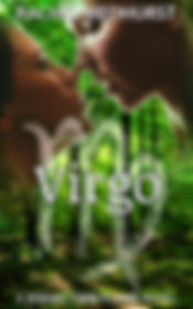 virgo ebook final.jpg