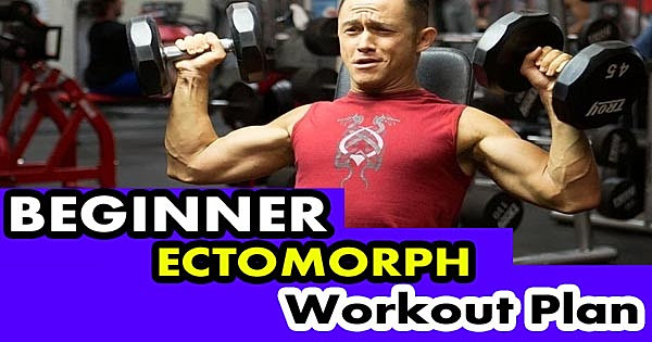 What is the Difference Between a Ectomorph, Mesomorph and ...
