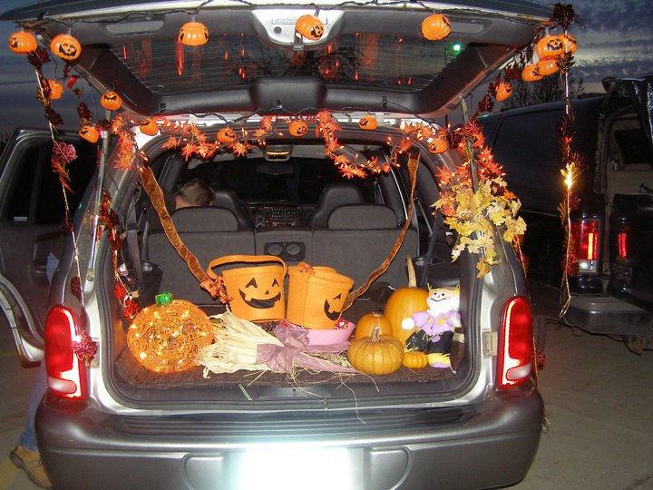 trunk 11.jpg