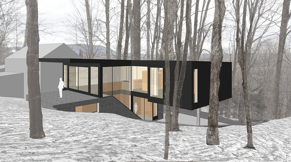 bromont mountain house_1.jpg
