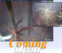 comingclean.png