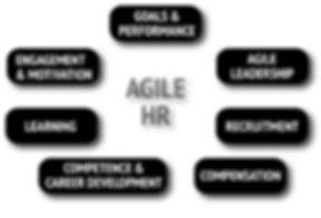 agile hr miselni vzorec.jpg