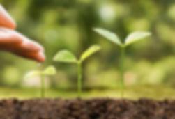 51059360-crianza-mano-y-regar-las-planta