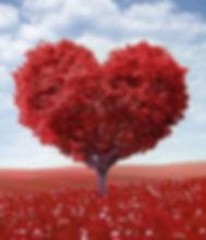 heart-shape-1714807_1280_edited.jpg
