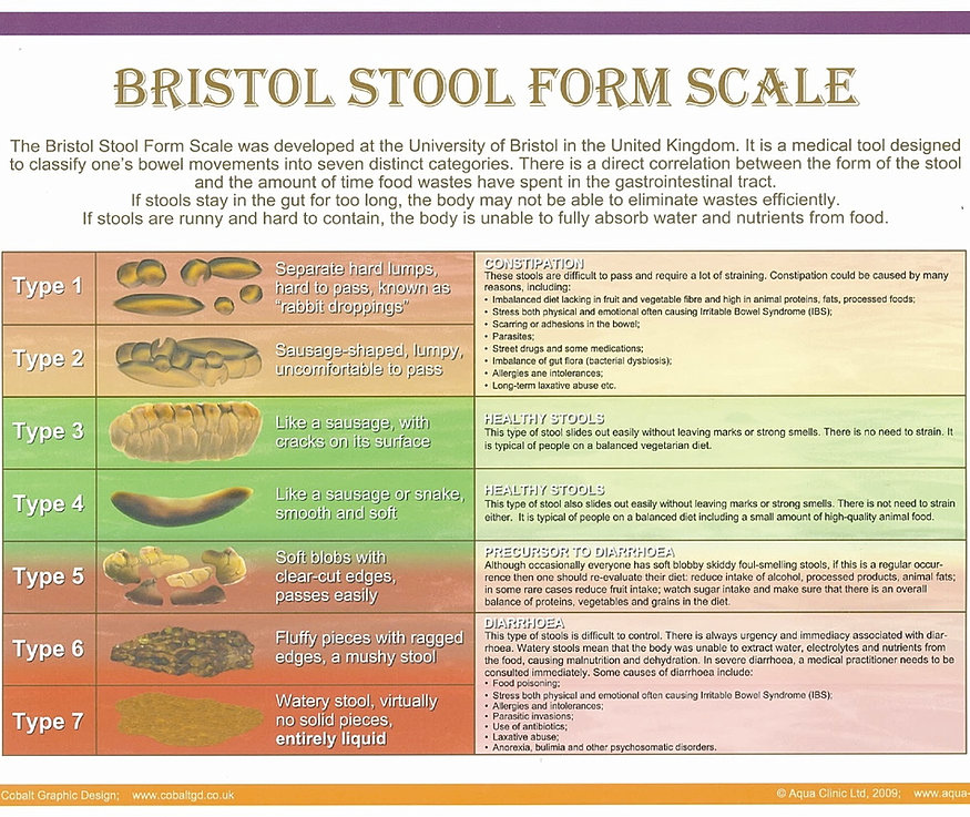 Bristol Stool Form Scale Poster Colon Hydrotherapy