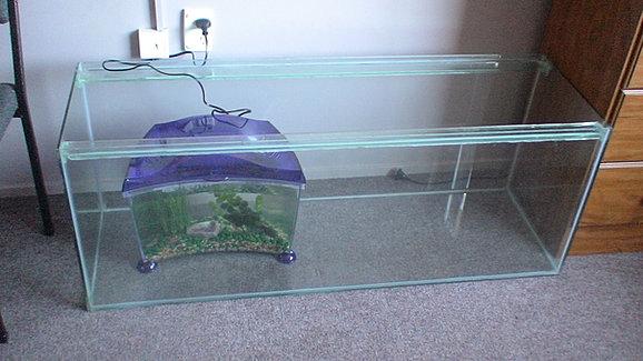 how to set up an axolotl tank