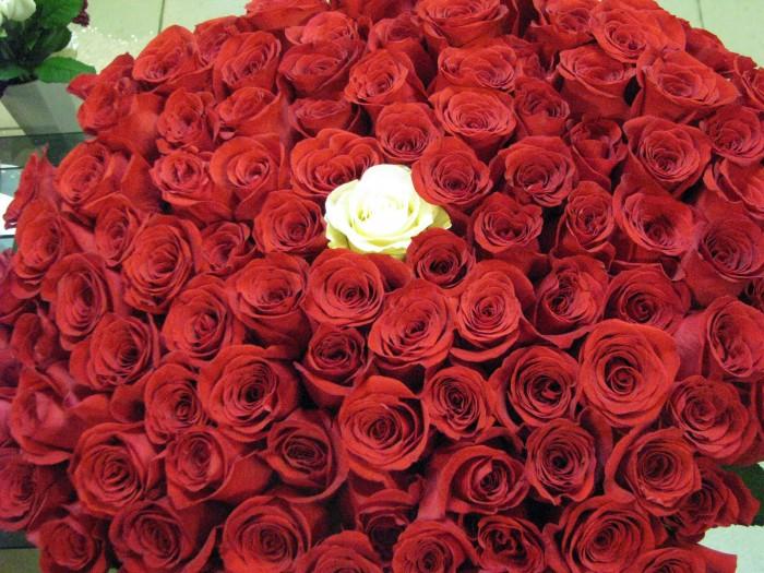 Цветов доставка в нижний новгород фото уход