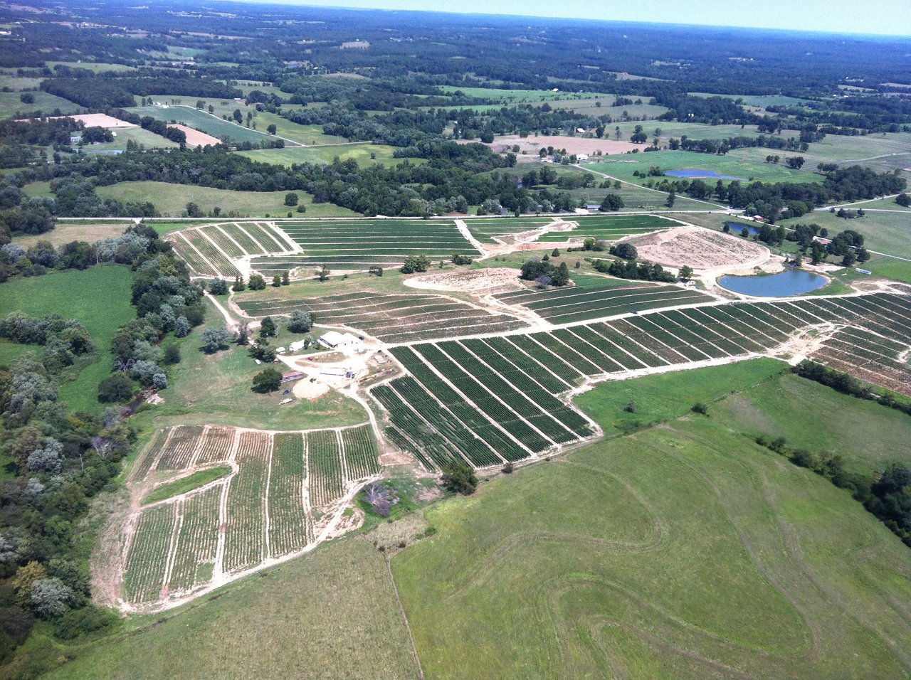 Missouri Vegetable Farm