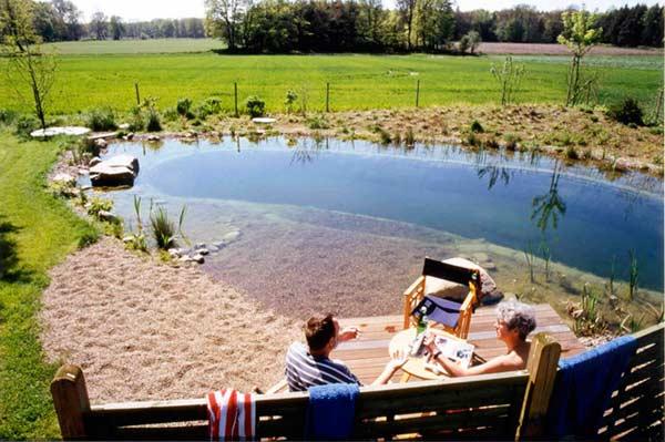 L construy una biopiscina en su jard n y su resultado es for Construccion de piscinas naturales ecologicas