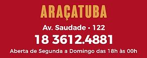 aracatuba.png