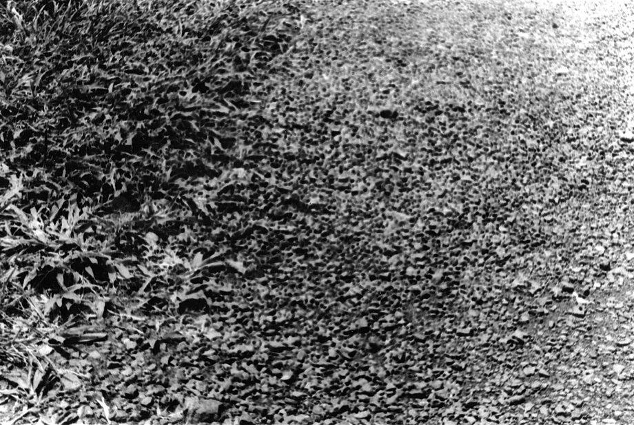 Grainy Film Texture of Rock Grainy Texture