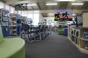 MDCS Library .jpg