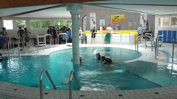 Club subaquatique de rouen les fosses for Horaires piscine conflans