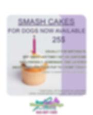 smash cakes.jpg