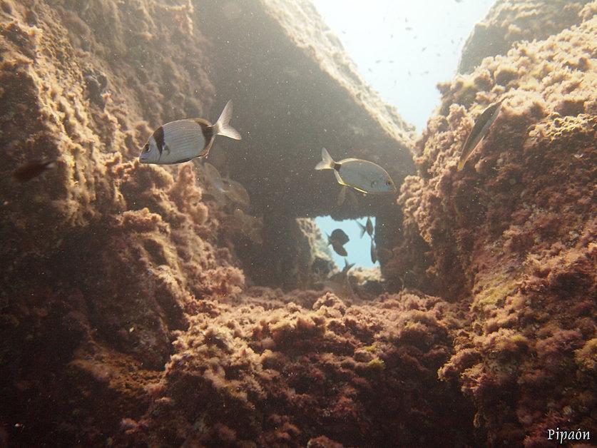 Arco submarino