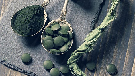 Spirulina-Powder-Algae-Alternative-Antio