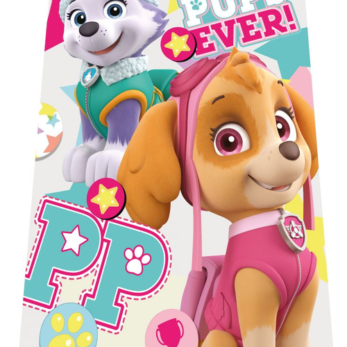 Paw Patrol Girls Blanket
