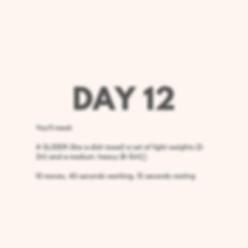 Day 12 Upper Body.png