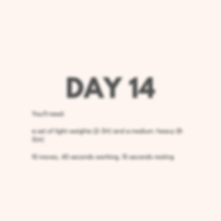 Day 14 Upper Body.png