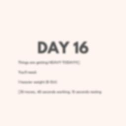 Day 16 Upper Body.png