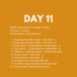 Day 11 (1).png
