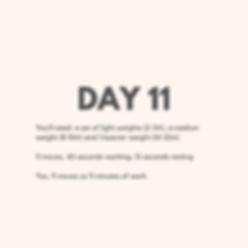 Day 11 Upper Body.png