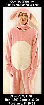 Open Face Pink Bunny
