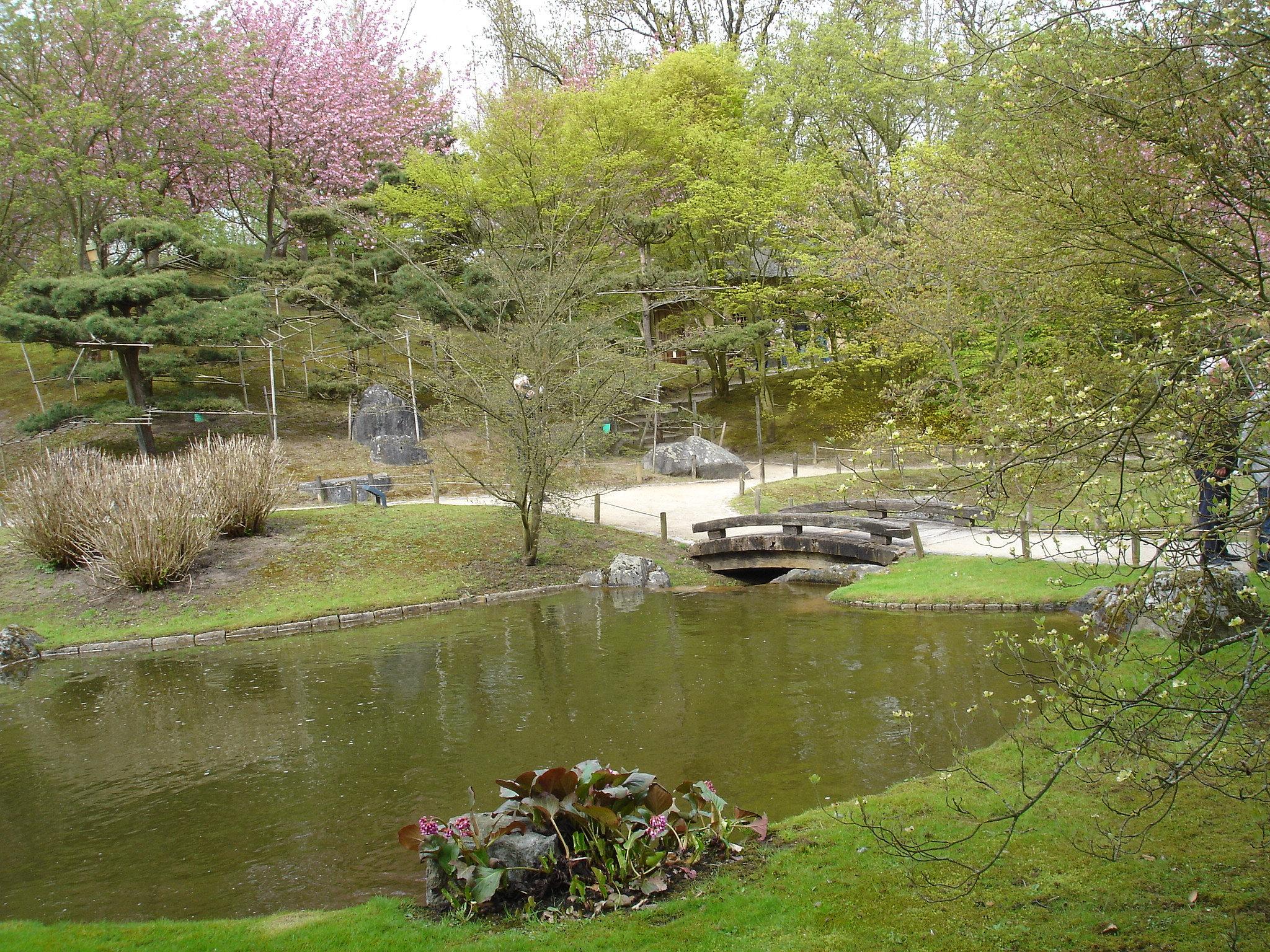 Jardin japonais hasselt 06 for Jardin japonais hasselt 2016