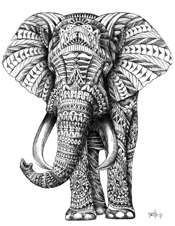 Elephant Drawing Elephant Head Pencil Drawing