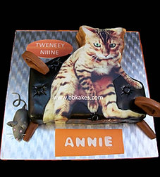Raffi the Cat on special Chair Cake