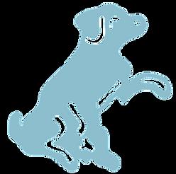 All Breed Dog Grooming Kidderminster