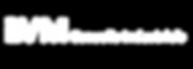 logo VM conseils industriel blanc.png