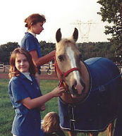 Stacey Yalenti Horse Accountant