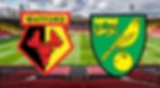 Fodboldrejser til Watford