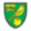 norwich-logo-vector.png