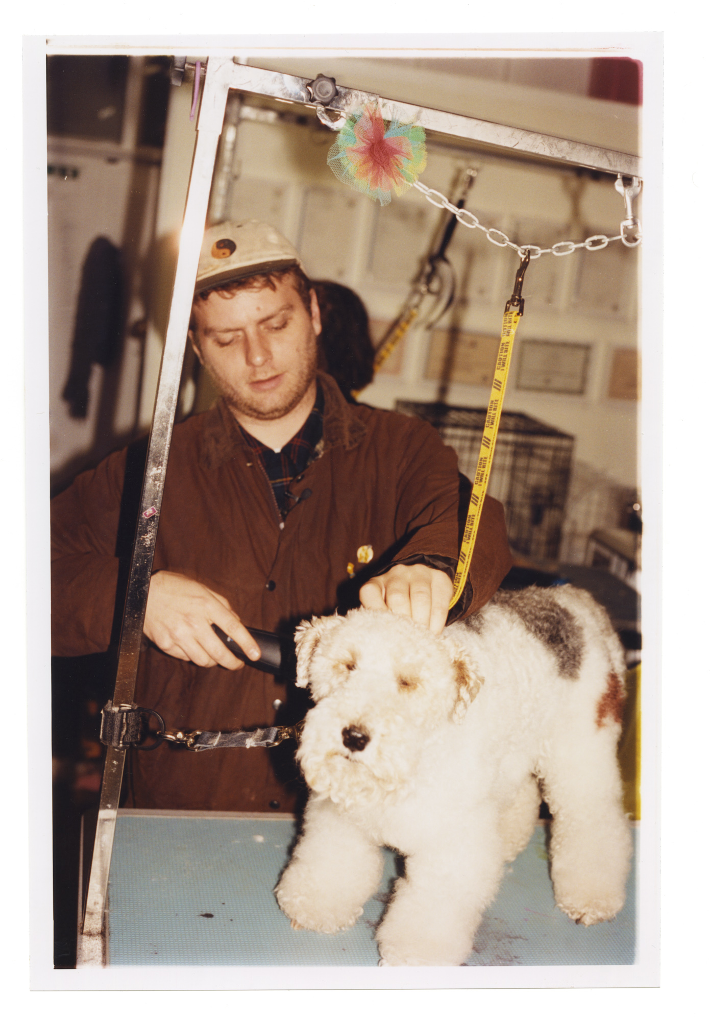 captured tracks independent record label crack linked up mac demarco as he gears up to release his new album this old dog on 5 performing the title track from the new lp mac cosies up