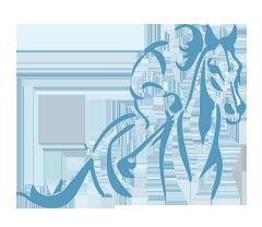 Dawn Properties Inc. | horse-racing | Wix.com