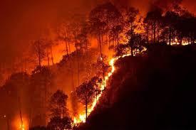 气候变化如何影响闪电
