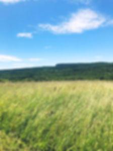 Mohonk Mountain.jpg