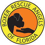 Boxer rescue Angels of FL