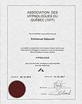 Hypnose, hypnologue, hypnothérapeute, Québec, Lévis