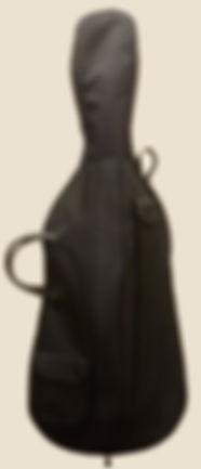 Cello Bag.jpg