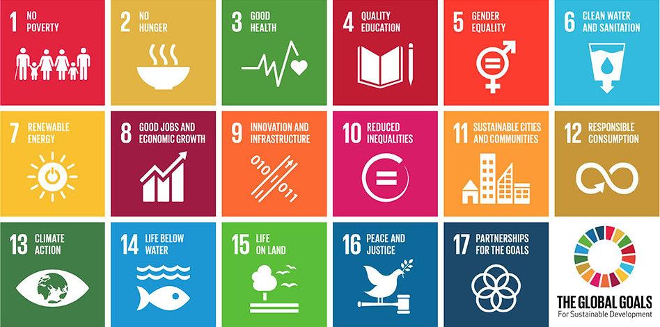 SDGs_FLUSH.jpg