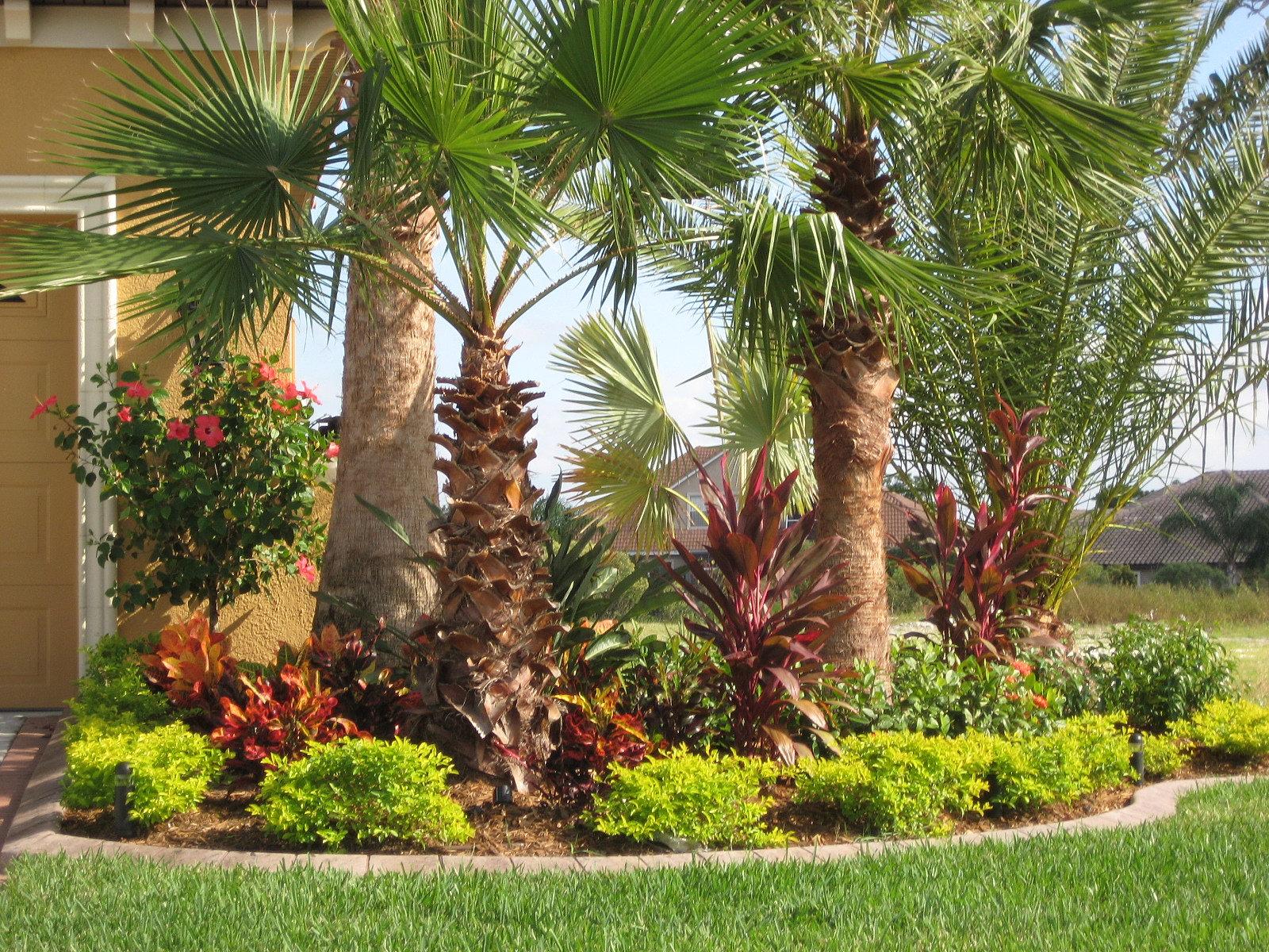 campus landscape sod landscaping installation