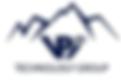 2020.05.24 VPI Logo.png