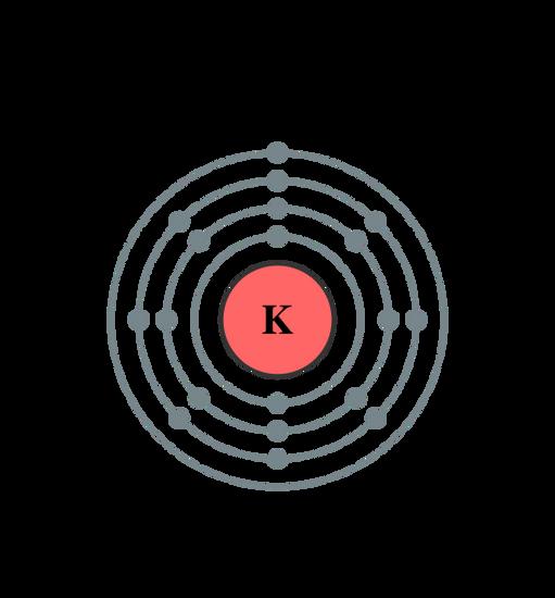potassium bohr diagram | Diarra