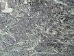 KERALA GREEN