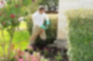 Omaha Termite Control | Exterminator | Treatment | Inspection | Tree Lawn Medic - Omaha NE