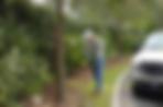 Omaha Tree Fertilization Treatment | Omaha Tree Mulching | Tree Lawn Medic - Omaha NE