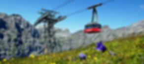 Torrent Ski